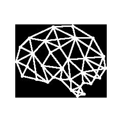 Wandering Brain Consultancy